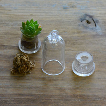 1 - Dome Shape Miniature Terrarium Container Kit Grow Your Own Live Plant Charm Green House Pendant Terrarium Supplies Jewelry Supplies