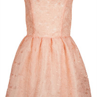 Delicate Organza Prom Dress - New In This Week - New In - Topshop