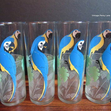 Vintage Parrot Tall Drinking Glasses, Birds / Set of 4