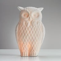 Night Owl Porcelain Lamp