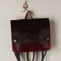 Hoxton Calf Hair Backpack by Kate Sheridan Wine One Size Bags