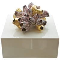 Times Two Design Barnacle Gilded Lacquered Box