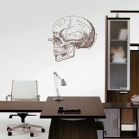 ik2446 Wall Decal Sticker skull bone structure title doctor's office Clinic