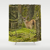 Woodland Shower Curtain, Tree Shower Curtain, Animal Shower Curtain, Woodland Decor, Nature Shower Curtain, Bathroom Decor
