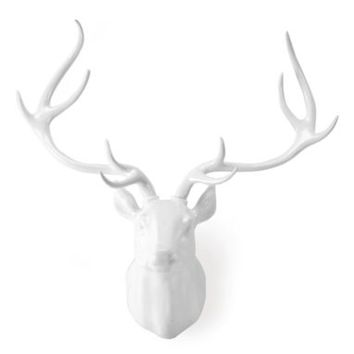 Deer Head - White Laquer | Fauxidermy | Animal Heads | Z Gallerie