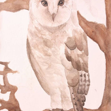 SALE Owl Watercolor print, PRINT, bird watercolor painting, art print, owl bird, art watercolor, nursery art, boys and girls art, 5x7, 8x11