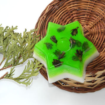 Christmas star soap-pine ylang ylang cones soap-Green herbal-vegan decorative-natural-christmas gift-guest soap-bath and beauty-Cupcake