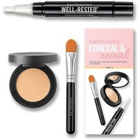 bareMinerals Conceal & Reveal