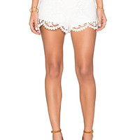 Scorpio Bloomers in White Lace