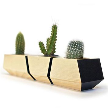 Boxcar Planters - Solid Ash and Black