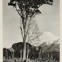 1931 Volcan Osorno Active Volcano Chile Photogravure - ORIGINAL PHOTOGRAVURE SA2