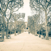 Paris Jardin des Plantes Fine Art Photography Print