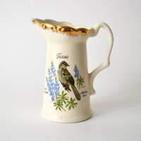 1950s Texas Souvenir Pitcher with Mockingbird and Bluebells AACO