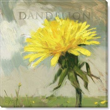 Gallery Wrap on Wood Frame ~ Dandelion