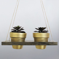 Hanging Planter, Succulent Planter, Hanging Pot,  Indoor Planter, Terracotta Pot, Air Planter, Gold Planter, Modern Planter, Wood Planter