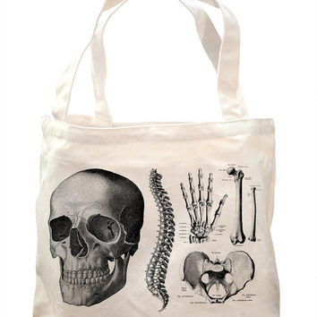 Vintage Anatomy: Skeleton Tote - Organic Canvas | Doctor Bones Anatomical Skull Osteology Study Learn Science Student Medical Diagram Nurse