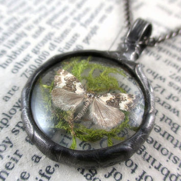 moth & moss necklace, night butterfly, terrarium necklace, handmade