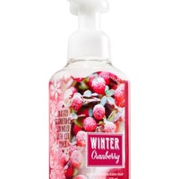 Gentle Foaming Hand Soap Winter Cranberry
