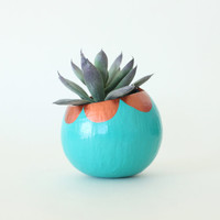Air Plant Planter with Air Plant - Teal with Copper Scallops