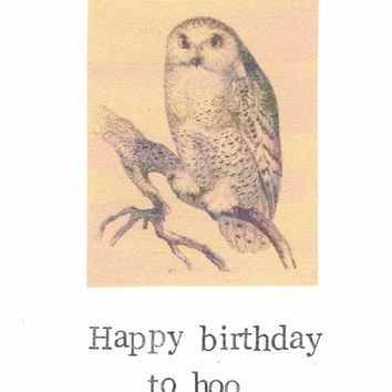Happy birthday to hoo snow owl card funny from moddessert on etsy happy birthday to hoo snow owl card funny bird watcher pun animals humor vintage rustic fall bookmarktalkfo Gallery