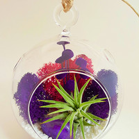 "Bliss Gardens Air Plant Terrarium with Moss, Flowers and Agate / Purple Passion 4"" Round Globe or 7"" Teardrop Globe"