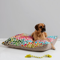 Garima Dhawan Rain 6 Pet Bed