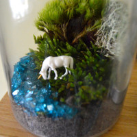 Unicorn Accessory for DIY Terrarium