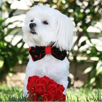 Red Wedding dog bow tie collar, Dog Birthday Gift, Handmade, Red Lovers
