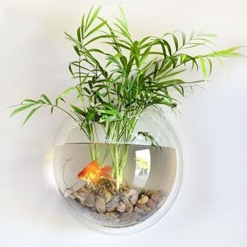 Wall Mounted Fish Bowl