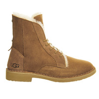 UGG Australia Quincy Lace Up Chestnut Suede - Ankle Boots