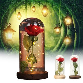 LED Red Silk Rose String Light
