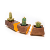 3 Pc. Solid Walnut Wood Planters - Orange