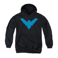Nightwing Logo Youth Pullover Hoodie