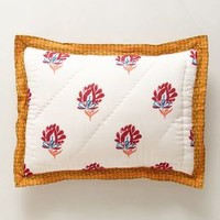Zocalo Embroidered Shams in Tangerine Orange