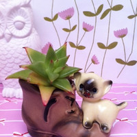 Kitsch, cat figurine planter/ posy vase! Cute china Siamese kitty on boot ornament!!!