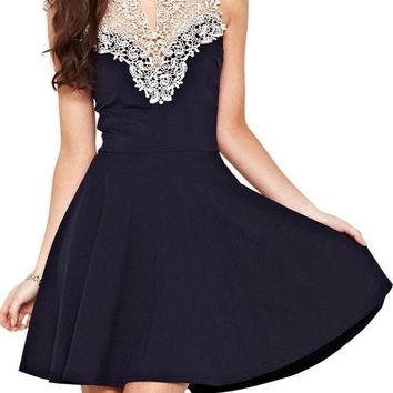 Black Lace Panel High Waist Sleeveless Skater Dress