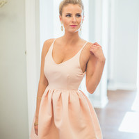 Twirl On Dress in Blush