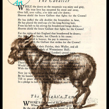 Brown Burro Drawing Beautifully Upcycled Vintage Dictionary Page Book Art Print