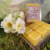 Beeswax Melts, White Or Yellow Wax, Clamshell Tray of 6 Melts, Hand-Poured, Flameless Candle, Choose Your Fragrance, Dye-Free, ECO Friendly