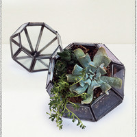Aketa Pointed Planter