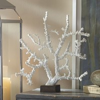 White Coral Stand