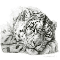 Pensive Snow Leopard G2011-011 Art Print by S-Schukina