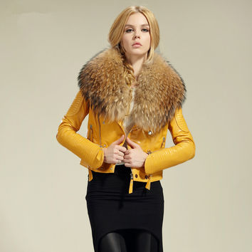 Genuine Sheep Leather Jacket with Raccoon Fur Collar
