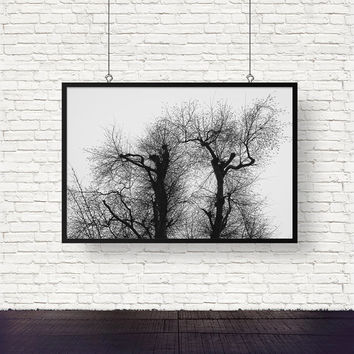 Monochrome Quirky Tree Print - Black and White Nature Wall Art, Digital Download | Woodland Decor by Mila Tovar