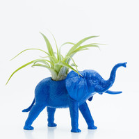 Elephant Planter with Air Plant Room Decor Safari by boygirltees