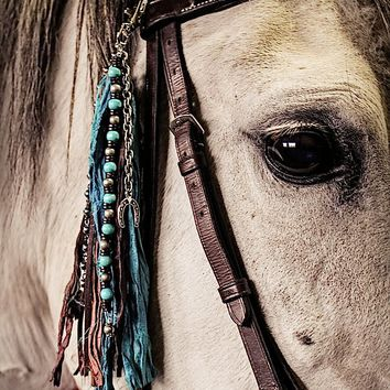 Turquoise and Horse Shoe Bridle Jewelry