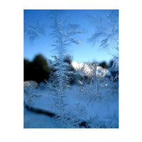 Jack Frost Winter Ice Fantasy, Frosty Windowpane, Home & Living, Dreamy Frosted Snow Winter Fantasy Photograph, Maine, FREE SHIPPING USA