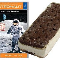 Astronaut Ice Cream Sandwich