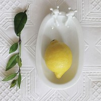 Bathtub Soap Dish By Creative Coop
