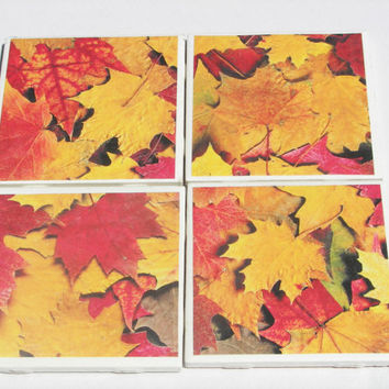 4 Tile Coasters in Autumn Theme